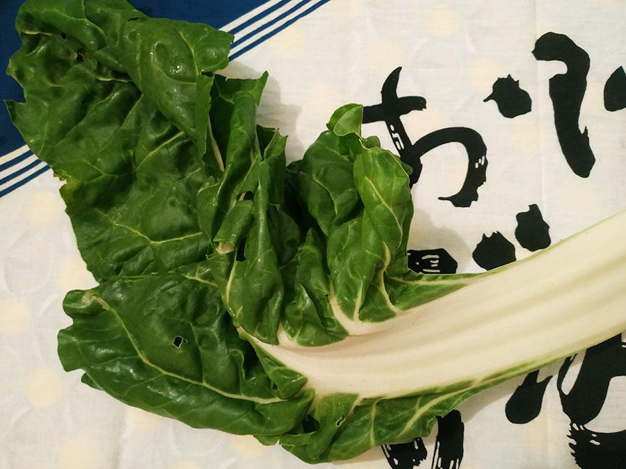 Les légumes contiennent naturellement du glutamate, à l'origine de la saveur umami (en particulier les champignons, les tomates mûres et les épinards). La viande, le poisson et les crustacés en contiennent également beaucoup ! Bref, tout ce qui rentre dans la composition d'un bouillon savoureux ;)