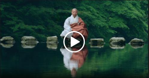 L'épisode de Chef's Table sur Jeong Kwan, nonne bouddhiste coréenne célèbre pour sa cuisine 100 % végane et naturelle, est un de mes préférés de la série.