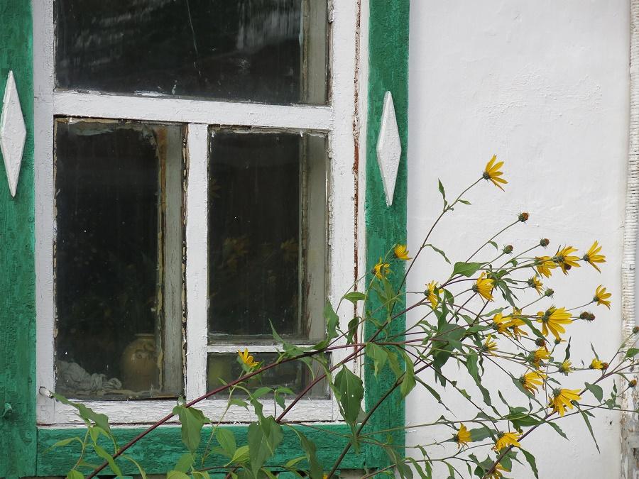 Les dernières fleurs de l'année se reflétaient dans la fenêtre du presbytère... Elles sentaient comme le miel que nous avions acheté sur le marché !