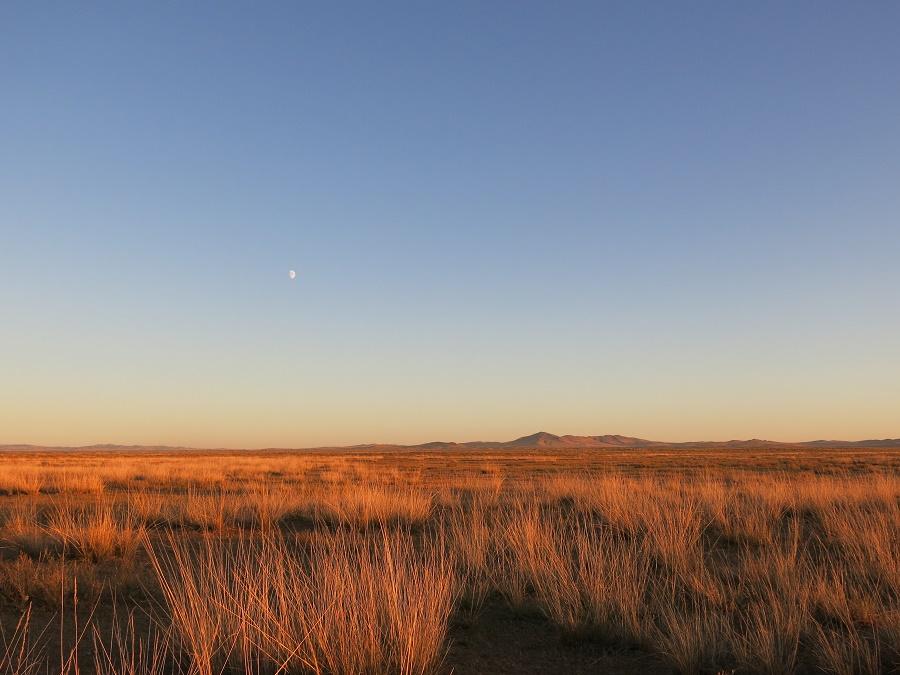 Parfois, la steppe a des airs de western...