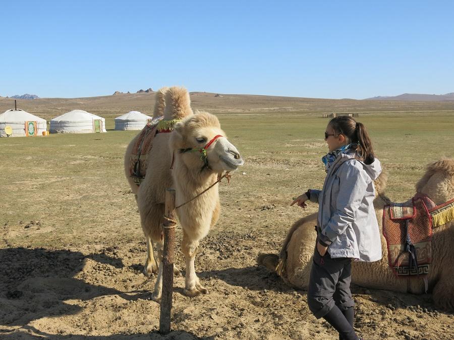 """Moi en grande conversation avec le chameau : """"Tu l'as acheté où ton tapis de selle ? Nan mais sérieux, c'est so 2018 !"""""""