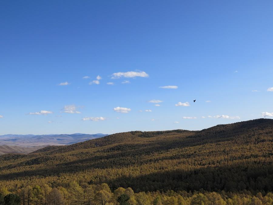 La vue sur les montagnes et la forêt, si rare en Mongolie, était à couper le souffle.