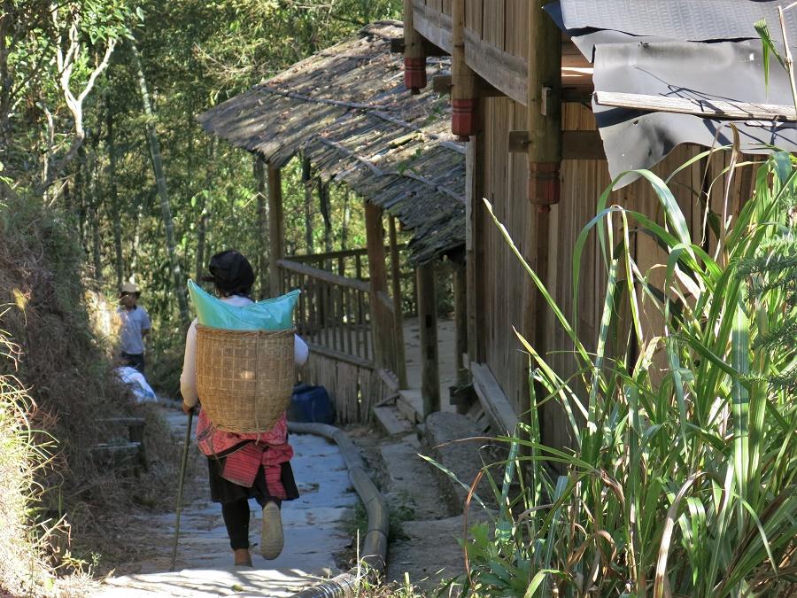 Pour atteindre mon auberge, j'ai dû grimper pendant quarante minutes par de petits escaliers et sentiers comme celui-ci. Je ne croisais presque que des paysans, toujours chargés d'un sac de riz, d'un gros bambou ou d'un moteur de moissonneuse. Dans le coin, on ne se déplace pas les mains vides...