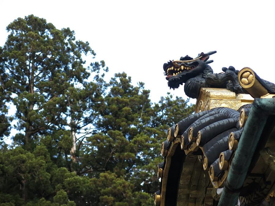 Les dragons, symboles de sagesse, de noblesse et de puissance, sont omniprésents dans le temple Tosho-gu. Comme les autres sculptures, ils sont composés de bois peint et ont été patiemment restaurés au cours des dernières années, notamment grâce aux bons soins de l'UNESCO.