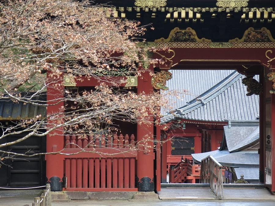Au mausolée Taiyuin, on retrouve le vermillon si cher à l'architecture bouddhiste, ainsi que des sculptures et des dorures, mais pas la profusion de couleurs et de motifs du temple Tosho-gu.