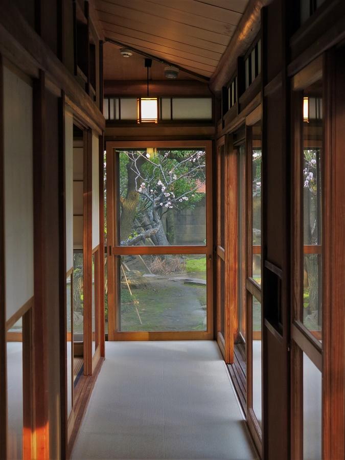 A l'entrée de la maison Sakyukan, un petit écriteau à la main annonçait fièrement que le prunier du jardin venait de fleurir :)