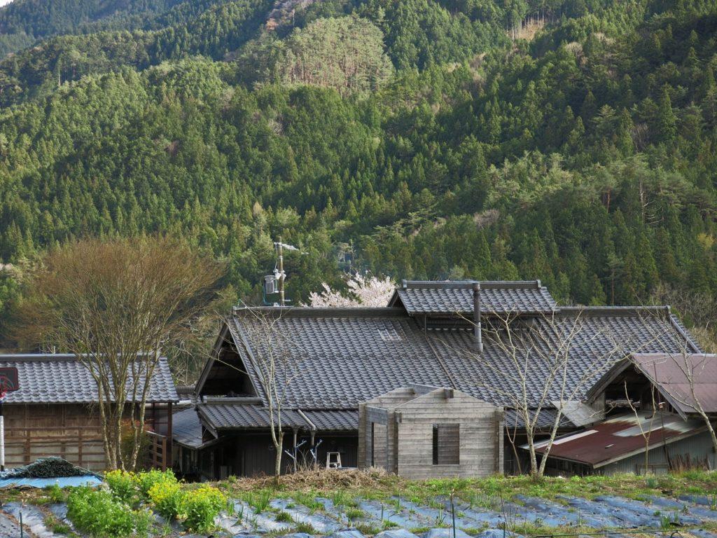 Trouver des hôtes de wwoofing au Japon : mon petit guide