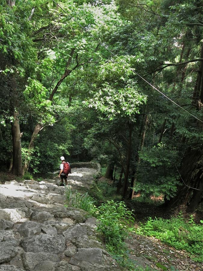 Le Kamikura Jinja est connu pour les 538 marches extrêmement abruptes qui y montent. Le seul fait de l'atteindre est en quelque sorte une offrande à la divinité des lieux... Je me suis amusée à les compter, mais elles sont tellement inégales que je n'en ai trouvé que 365 ! Du coup, en les grimpant, j'ai l'impression d'avoir expié tous mes péchés de l'année écoulée ;)