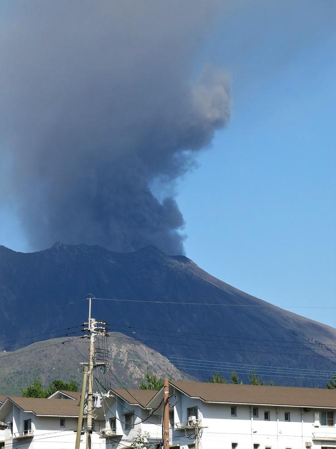 La plupart du temps, l'activité du volcan de Sakurajima se manifeste par la colonne de cendres noires qui s'en échappe, constituant une éruption plutôt bénigne. Cependant, le volcan explose régulièrement, comme tout récemment en 2019. Il déverse alors de véritables coulées de lave sur ses pentes, souvent accompagnées de tremblements de terre et d'éclairs. Bien qu'un périmètre de 2 km autour du cratère soit interdit d'accès, il est frappant de voir des habitations juste au pied d'un dragon pareil...