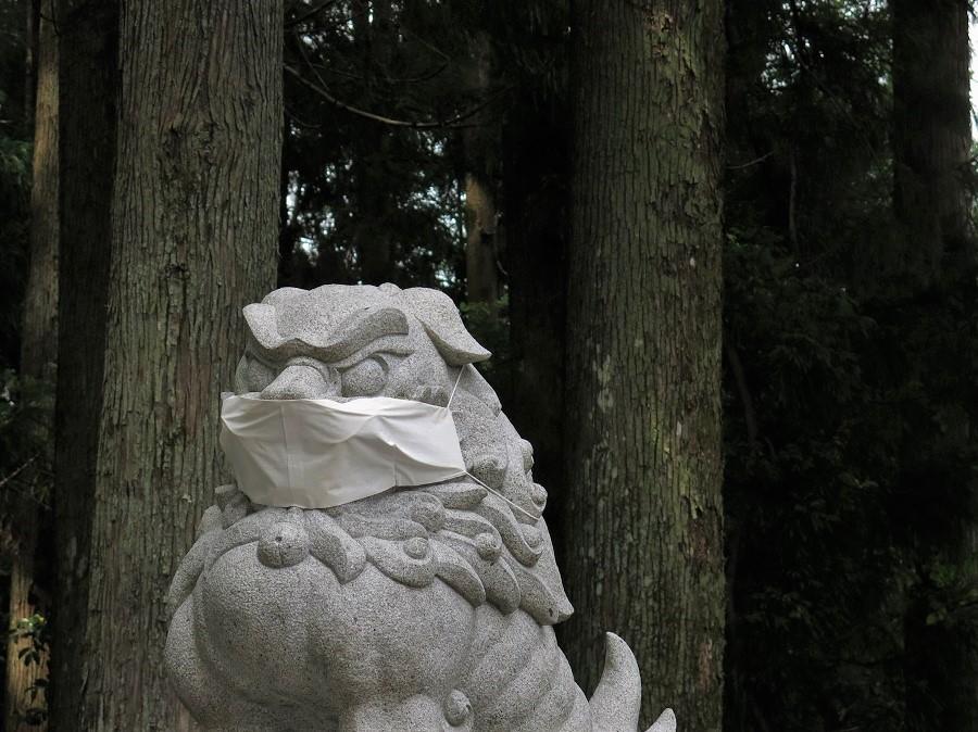 En effet, coronavirus oblige, il y avait très peu de visiteurs. L'ambiance était posée dès l'entrée, où les traditionnelles statues de chiens qui gardent les sanctuaires japonais étaient affublées de gros masques sur-mesure ! Pour réellement apprécier l'âme du lieu, il nous manquait les bruits de la cloche remuée par les fidèles pour attirer l'attention du dieu, les mains qu'on claque deux fois avant de faire sa prière, la fumée de l'encens et l'ondulation des flammes de bougies.