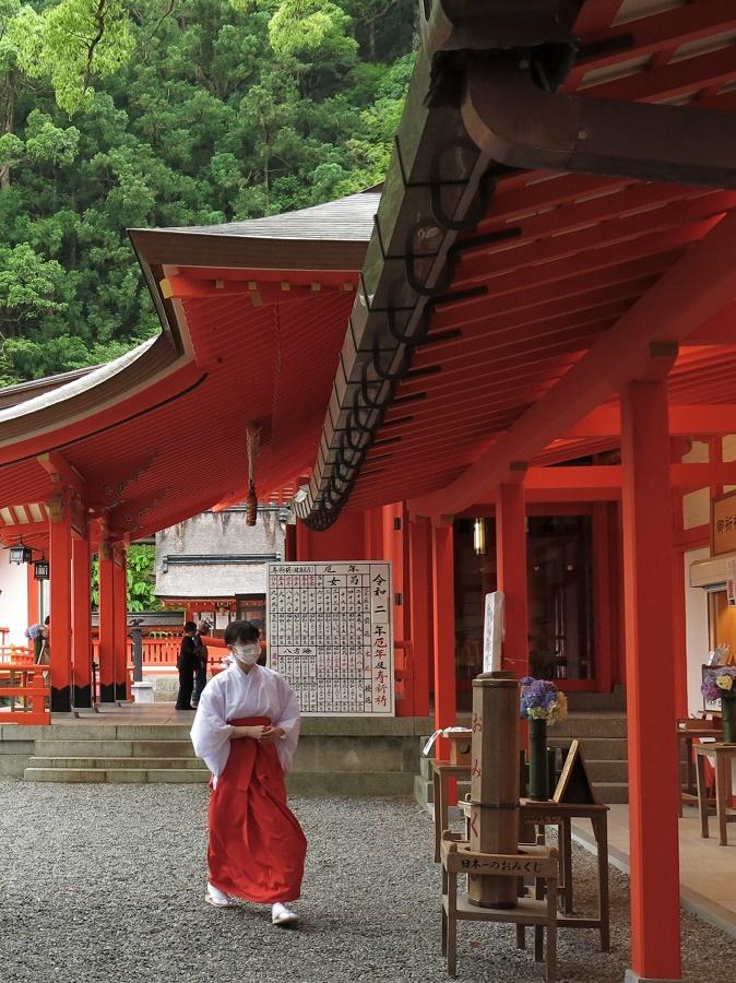 Il y avait plusieurs miko, toutes portant l'habit traditionnel de leur fonction. On retrouve les miko dans presque tous les sanctuaires shintô : bénévoles ou employées, ces jeunes femmes tiennent les stands d'amulettes et d'horoscopes, dont les Japonais sont si friands. Lors des fêtes et cérémonies, ce sont elles qui assistent les prêtres et, en particulier, effectuent les danses rituelles.