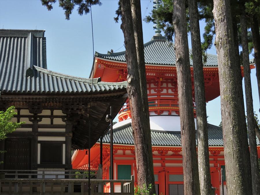 On reconnaît facilement les bâtiments bouddhistes et shintô à leur architecture et à l'utilisation de couleurs bien différentes. En principe, les temples bouddhistes sont en bois sombre, et les sanctuaires shintô peints de couleurs vives : jaune, vert et surtout vermillon.