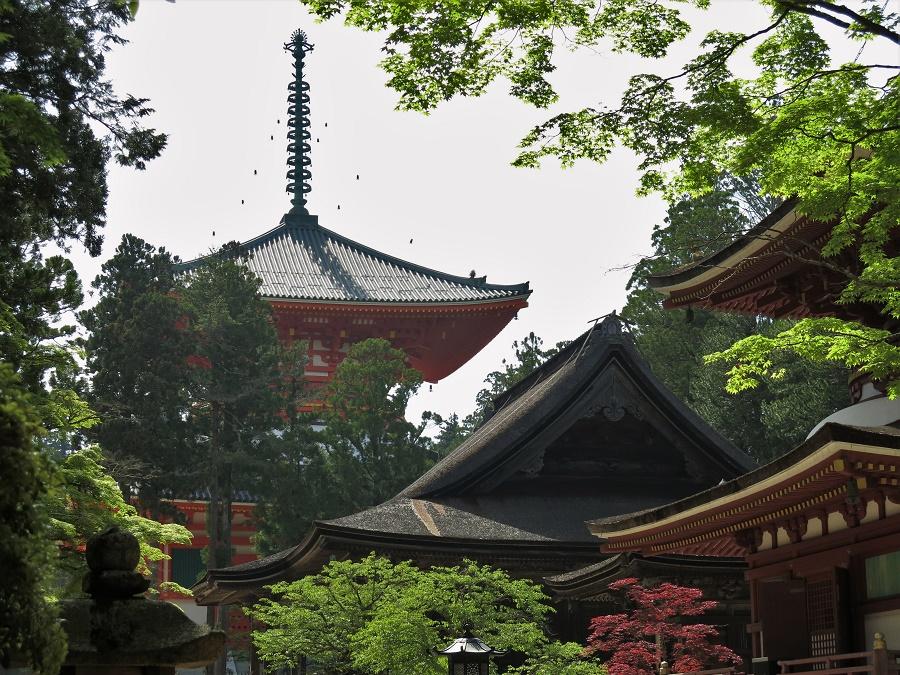 Quelques-uns des nombreux temples et sanctuaires du mont Koya, tous classés au patrimoine mondial de l'humanité.