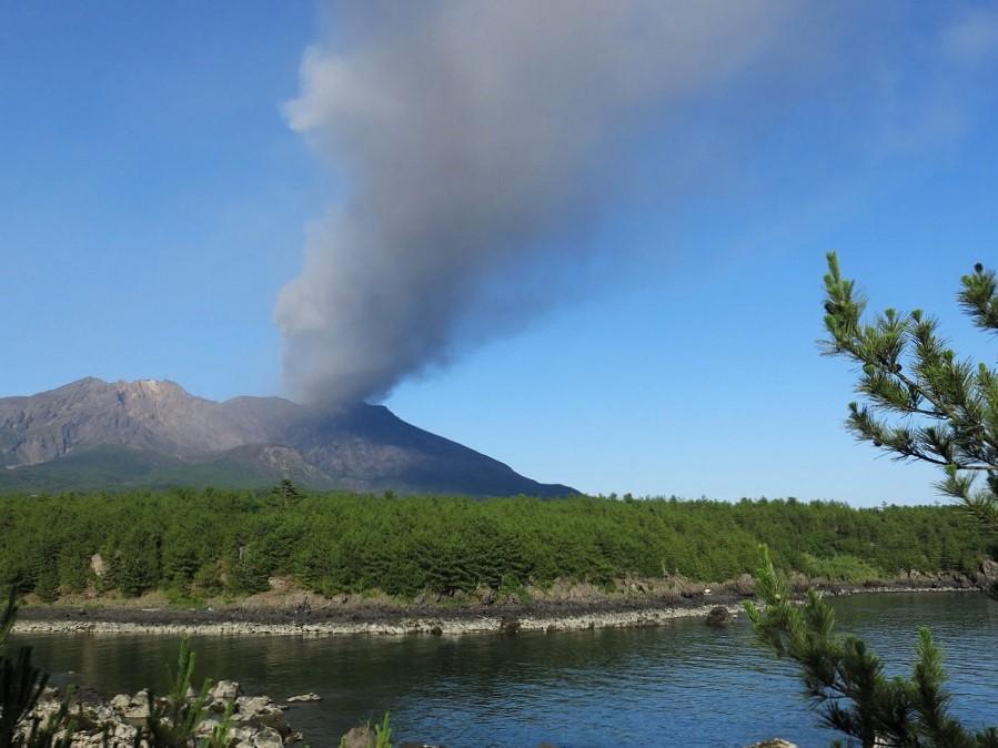 Avec l'odeur des petites criques et des pins chauffés de soleil, on aurait pu se croire dans les calanques… Mais au détour du sentier, nous pouvions apercevoir de magnifiques vues sur le volcan de Sakurajima. En cette fin d'après-midi sans vent, il semblait vouloir arroser de cendres toute la préfecture de Kagoshima.