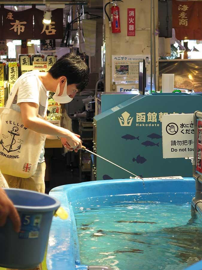 Voici une autre activité pour immerger les touristes au cœur de la vie du marché Asaichi : pêchez votre propre poisson, m'sieur-dames ! Et hop, cinq minutes plus tard, le chef au couteau bien aiguisé vous en aura fait une belle assiette de sashimi...