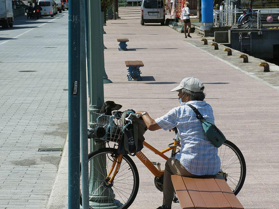 Sur le port, un papy profite du soleil avec son petit chien sage. Les Japonais sont gagas de leurs chiens et adorent les promener en poussette... Personnellement, je trouve le panier de vélo plus ergonomique ;)